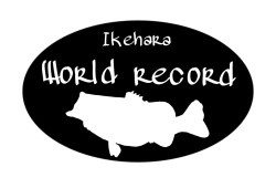 ワールドレコード割引